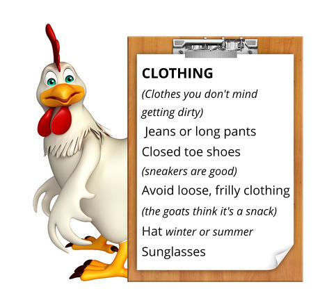 CLOTHING (Clothes you don't mind  getting dirty)   Jeans or long pants   Closed toe shoes  (sneakers are good) Avoid loose, frilly clothing  (the goats think it's a snack)   Hat winter or summer Sunglasses