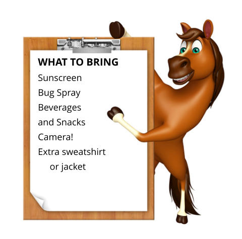 WHAT TO BRING  Sunscreen Bug Spray  Beverages  and Snacks  Camera!  Extra sweatshirt      or jacket